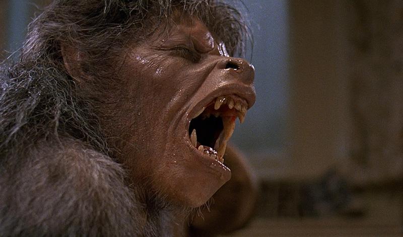 5 great werewolf movies