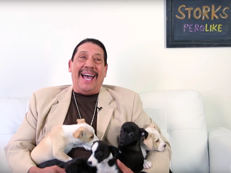 Danny Trejo being surprised with puppies is adorable