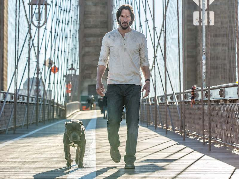 First look at John Wick sequel