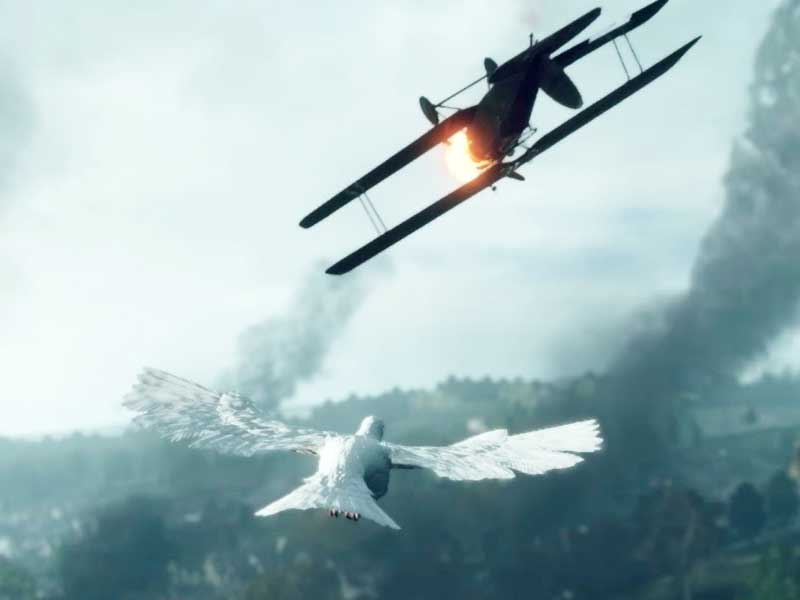 WATCH: Battlefield 1's senior producer talks about pigeons