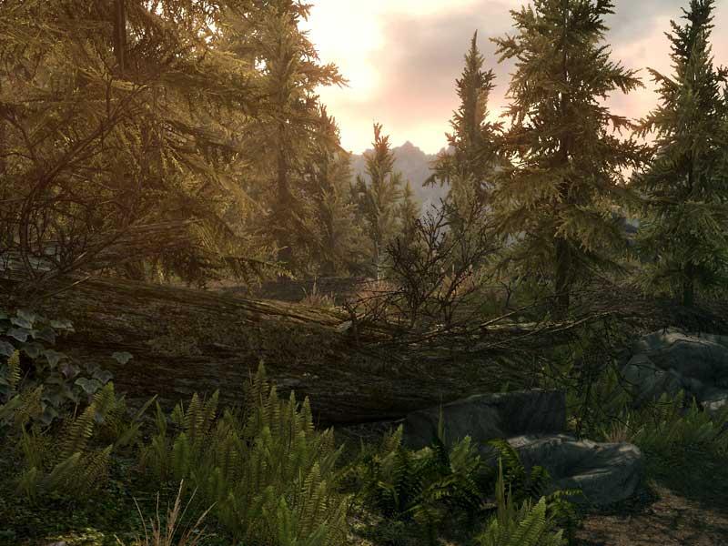 WATCH: The Elder Scrolls: Skyrim Special Edition gameplay trailer