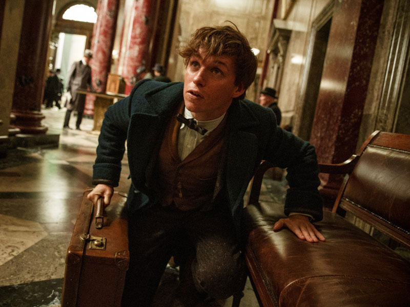 Fantastic Beasts and Where to Find Them – review