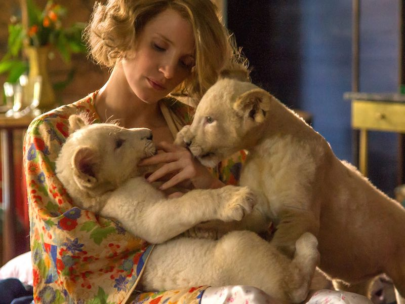 First look at The Zookeeper's Wife