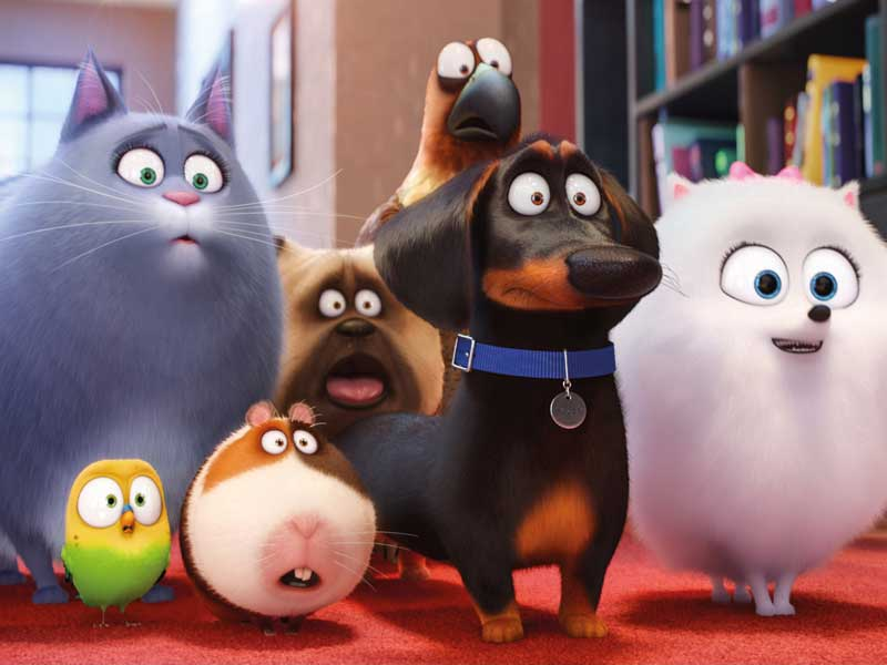 Delving deeper into The Secret Life Of Pets