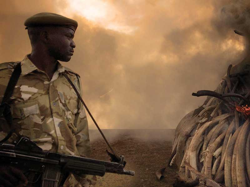 Best Documentary Oscar shortlist unveiled