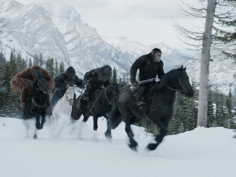 Check out first trailer for War For The Planet of The Apes