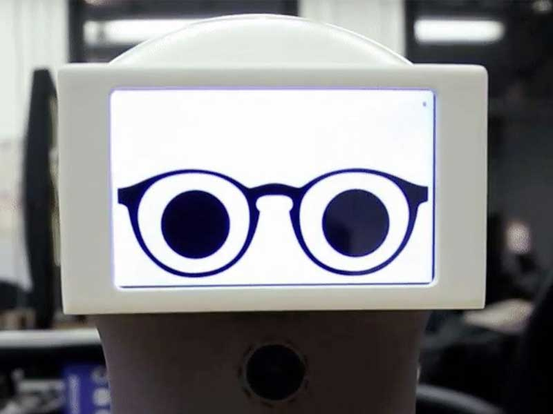 AWW – take a peep at Peeqo the GIF Bot