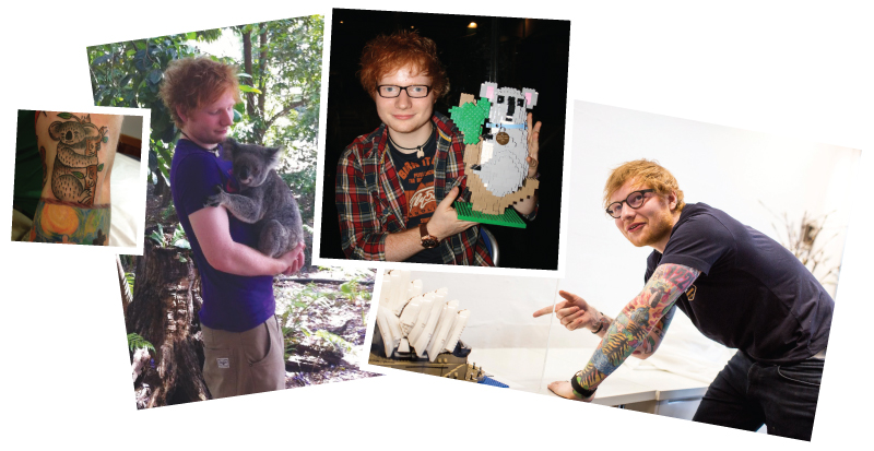 Ed Sheeran Harlow Photos