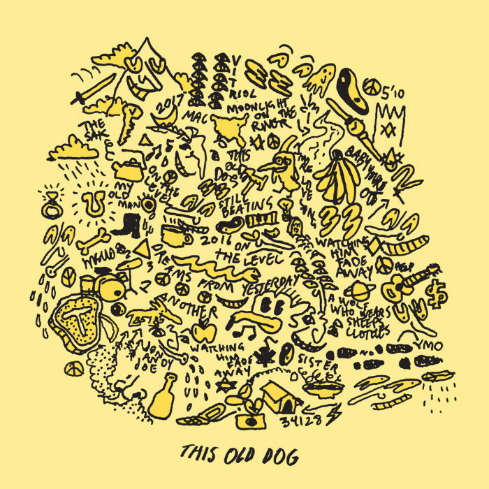 MacDemarco-This-Old-Dog