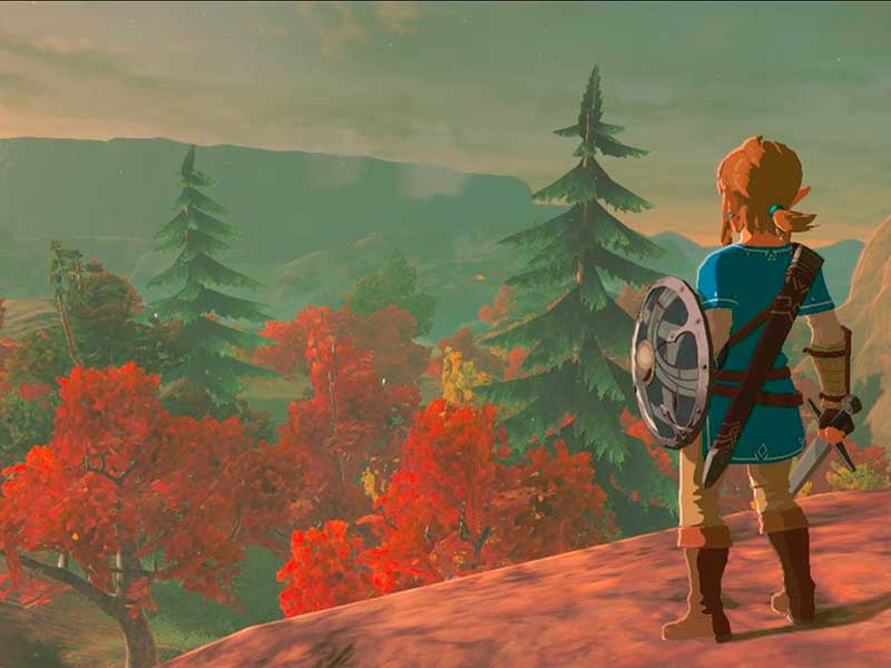 There's a Breath of the Wild doco on the way