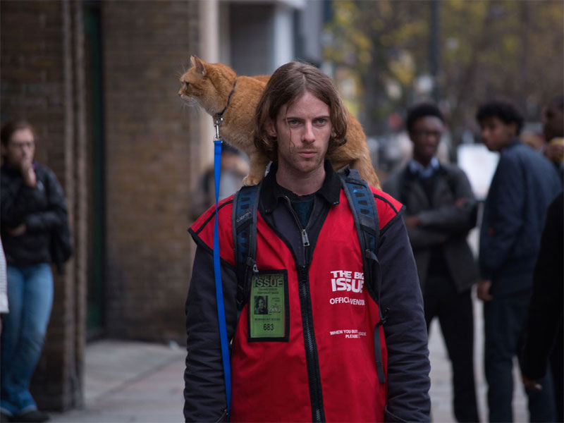 A Street Cat Named Bob on DVD and Blu-ray May 10