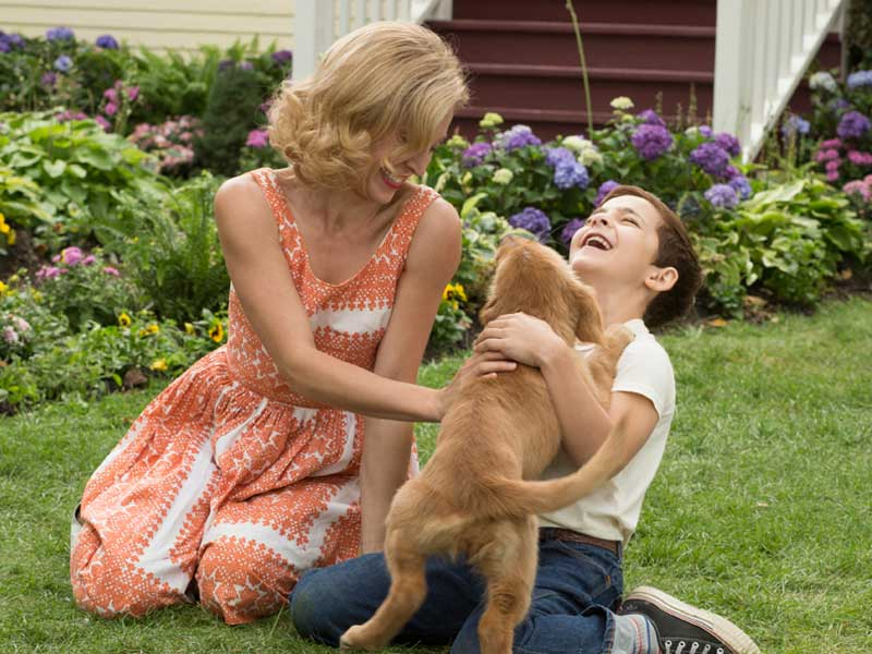 A Dog's Purpose – review