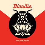 Blondie Pollinator