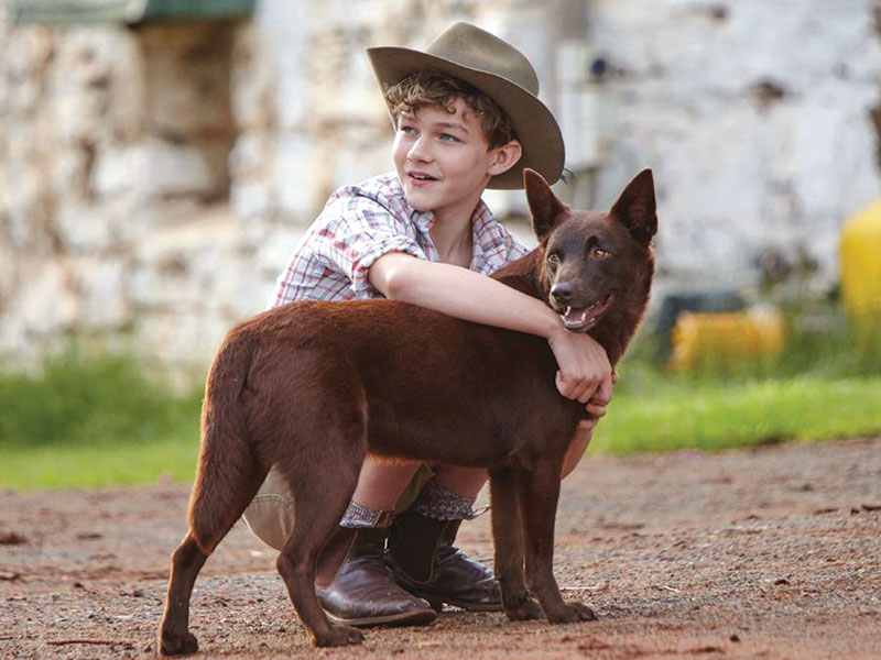 Red Dog True Blue Release Date Australia