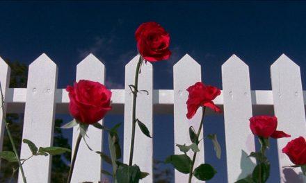 5 films that burrow beneath the 'burbs