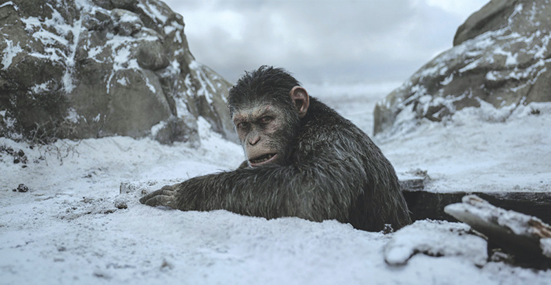 War for the Planet of the Apes on DVD, Blu-ray, 3D and 4K November 15