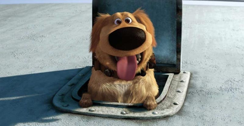Up's Dug the dog in real life