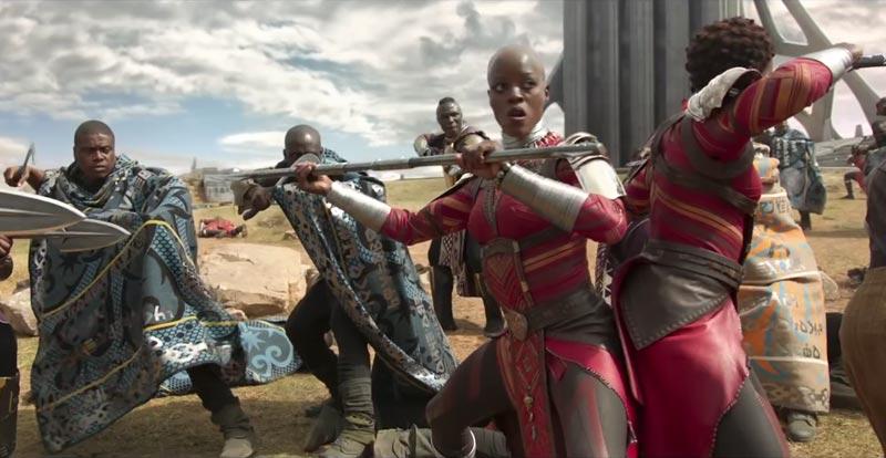 Black Panther – meet the warriors