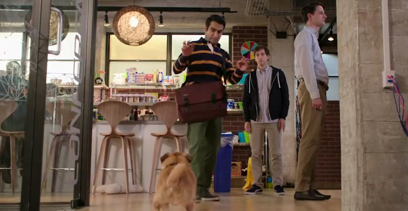 Silicon Valley goes to the dogs – and a bear