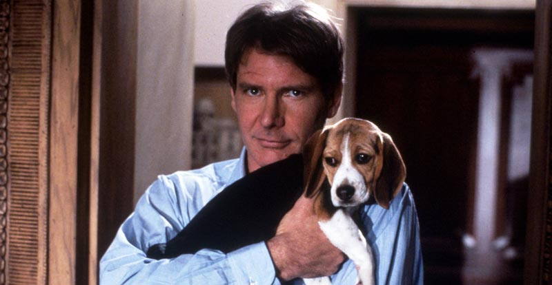 Harrison Ford is going to the dogs