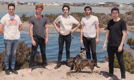 Rolling Blackouts Coastal Fever, 'Hope Downs' review