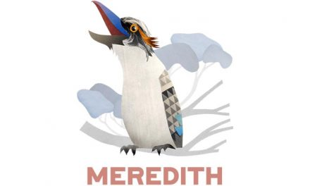 First Meredith 28 acts announced
