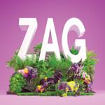 Paces Zag