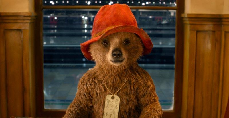 Bears - Paddington