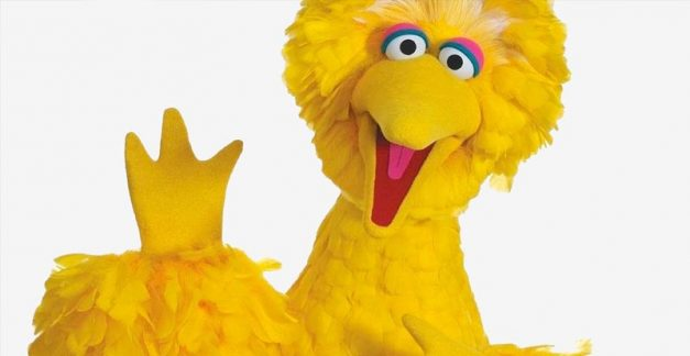 Sesame Street's Big Bird hanging up the feathers