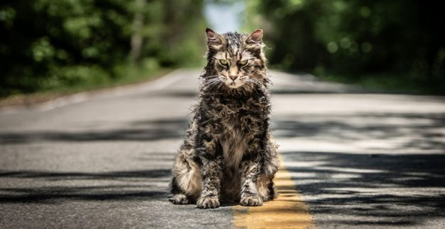 Q&A with Melissa Millett – Pet Sematary