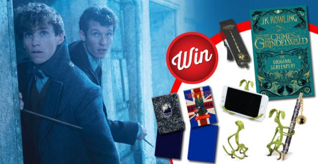 12 Fantastic Beasts: The Crimes of Grindelwald bundles