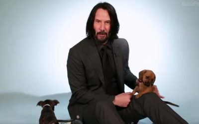 Keanu Reeves answers questions – with puppies!