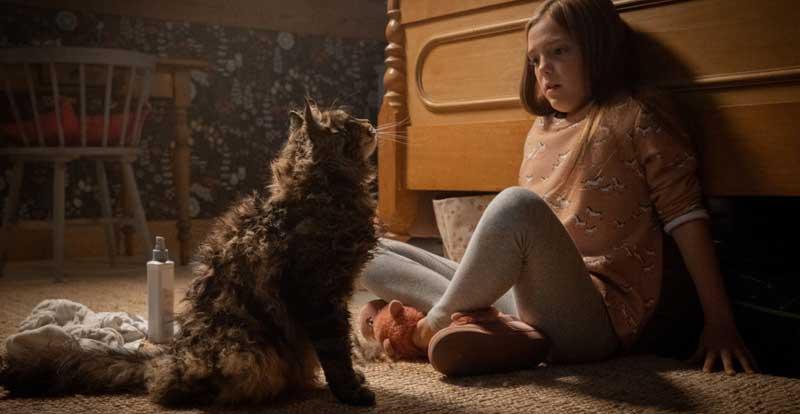 Pet Sematary on DVD, Blu-ray & 4K July 10