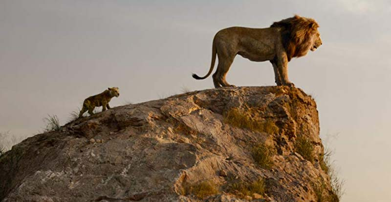 The Lion King – behind the lion curtain…