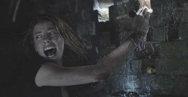 Crawl on DVD & Blu-ray October 23