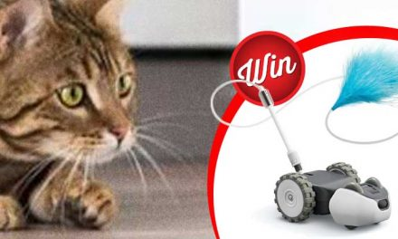 Meow Time! Score one of five Petronics Mousr Robotic Cat Toys