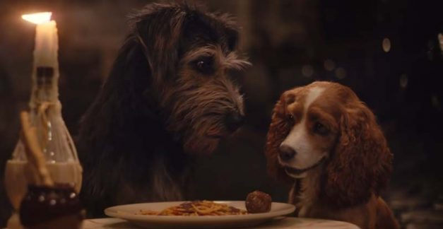 Dining out with Lady and the Tramp