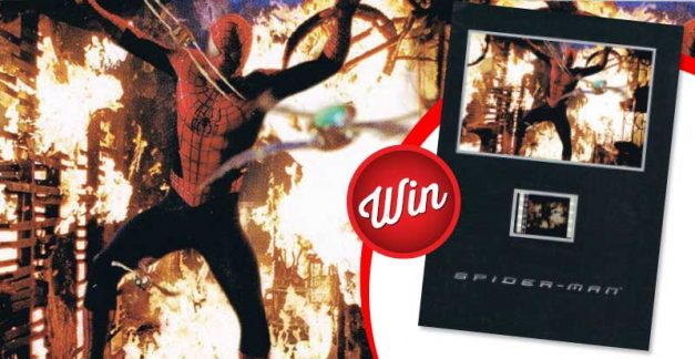 Own the world of Spidey when you score a Spider-man (2002) senitype