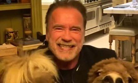 Arnie talks to the animals