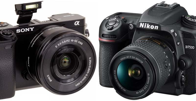 Caught on camera – Mirrorless vs DSLR