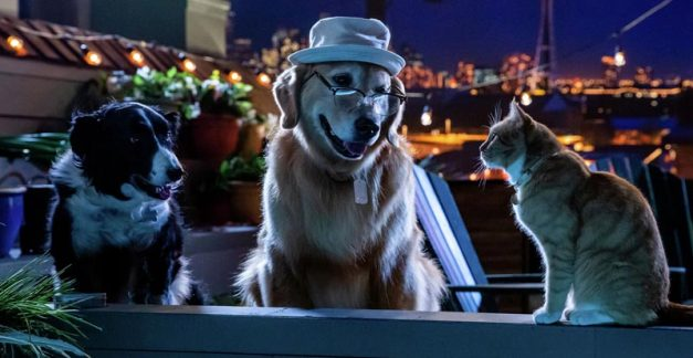 Feline groovy? Cats & Dogs 3: Paws Unite is coming
