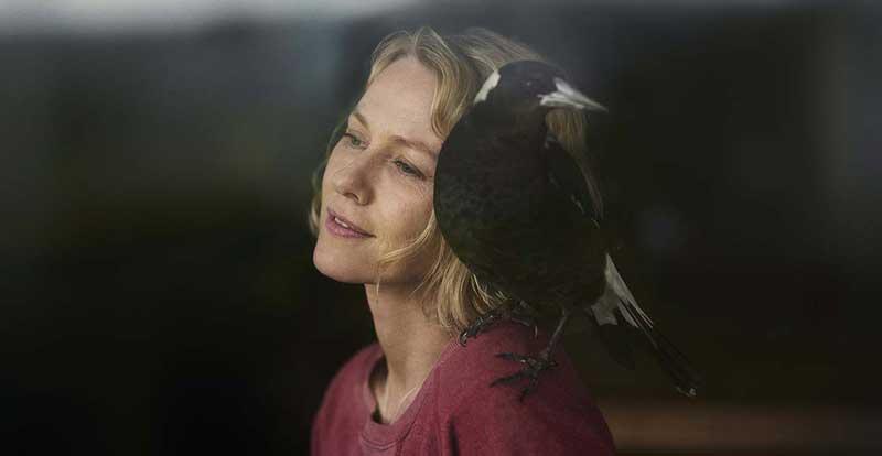 Penguin Bloom premieres at TIFF