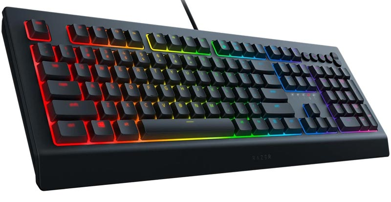 Playing with the Razer Cynosa V2 gaming keyboard