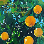 Album cover art for Violet Bent Backwards Over The Grass by Lana Del Rey