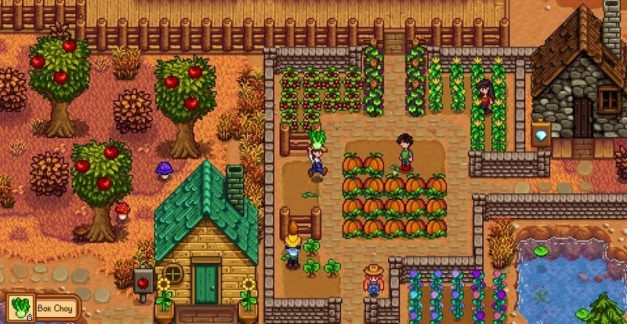 Get physical with Stardew Valley!