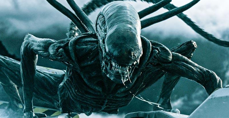 New Alien series heading home
