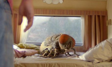 That's not a fly, THAT's a fly! Catch a buzz with Mandibles
