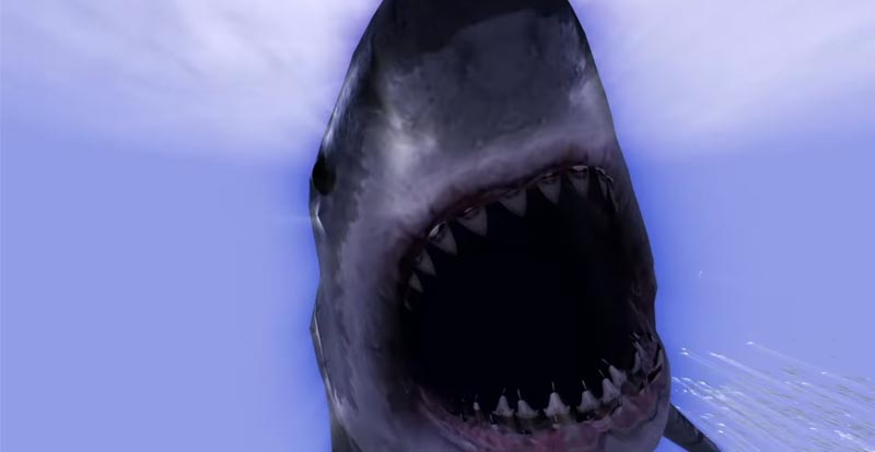 Move over Jaws and make way for Noah's Shark