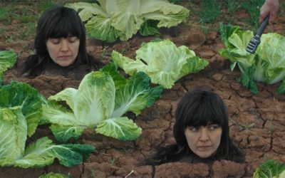 Courtney Barnett's new clip is curiouser and curiouser